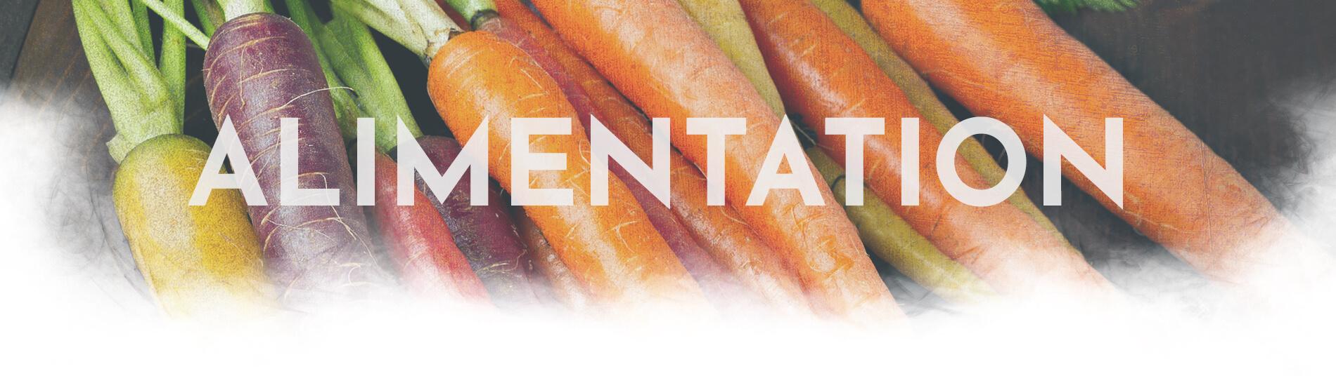 Margaux Vidal - Ostéopathe - Blog Alimentation header