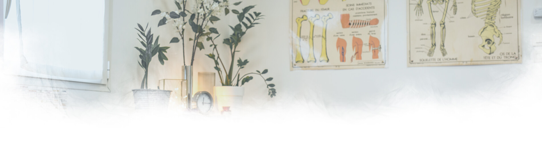 Margaux Vidal - Ostéopathe - Tarifs et Remboursements Header
